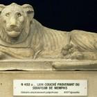 Lion du Sérapéum